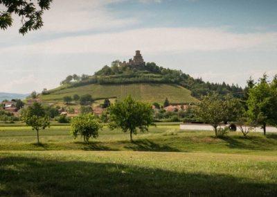 Staps 2019 Saint Romain Le Puy Superflu 31